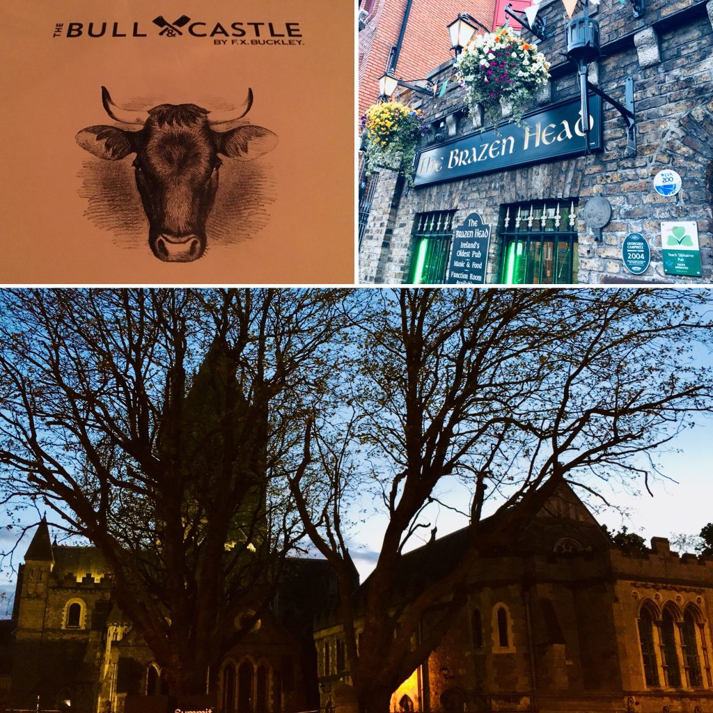 Bull & Castle restaurant, Brazen Head Pub, Christ Chruch Cathedral