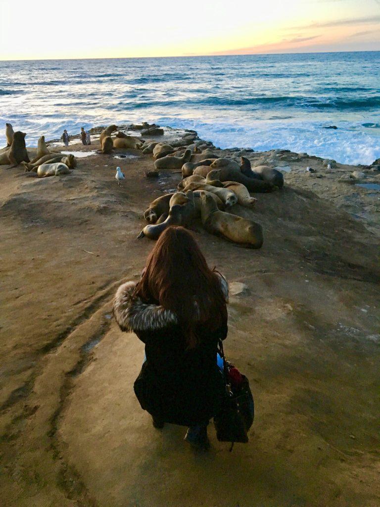 La Jolla Cove. San Diego